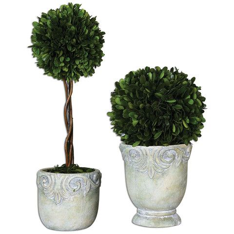 Decorative Boxwood Balls Uttermost Preserved Boxwood Ball Topiaries Set Of 2 60112