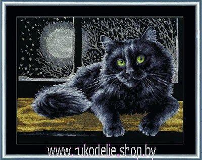 Вышивка котов на черной канве 166