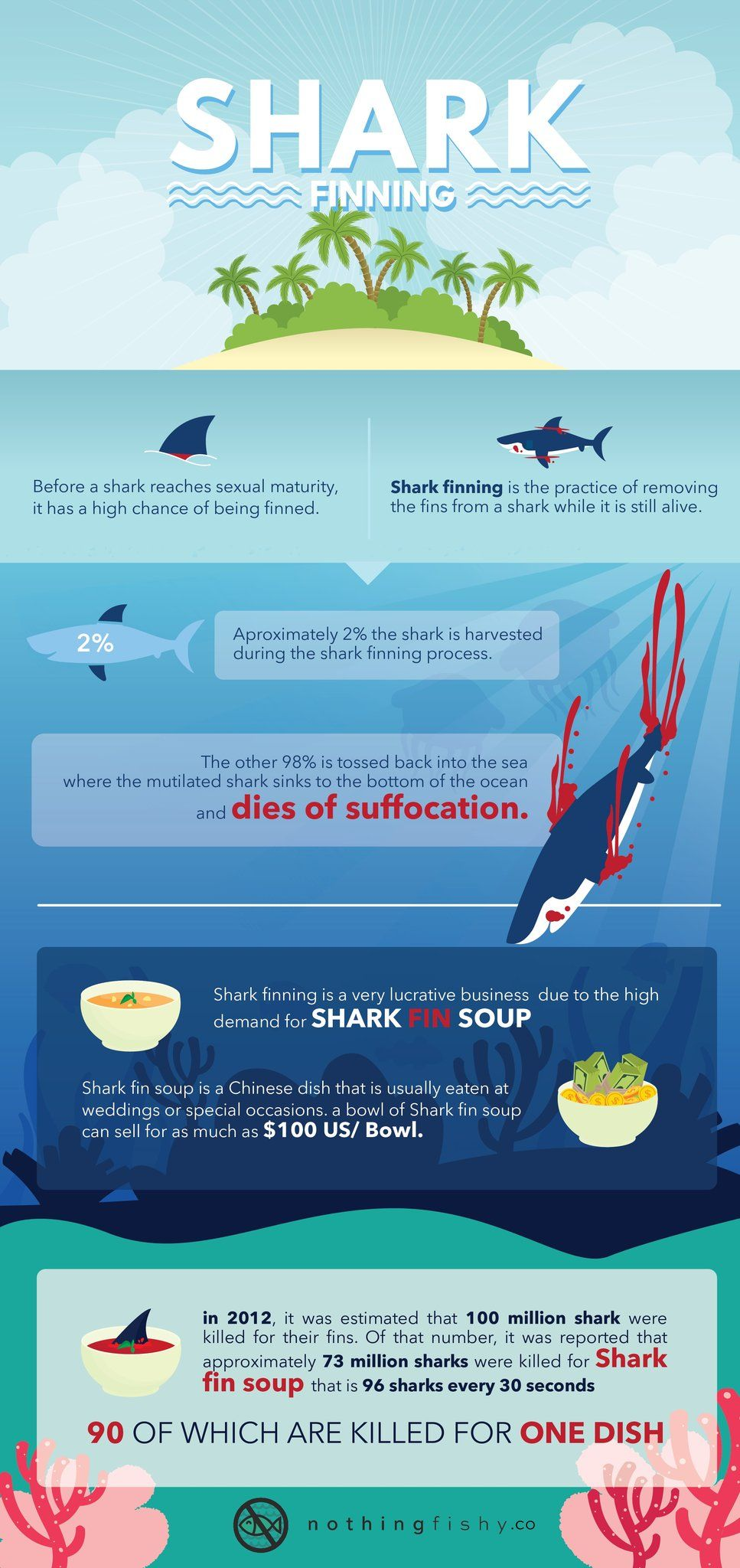 Shark Finning - The Facts Behind The Cruelty #Infographic