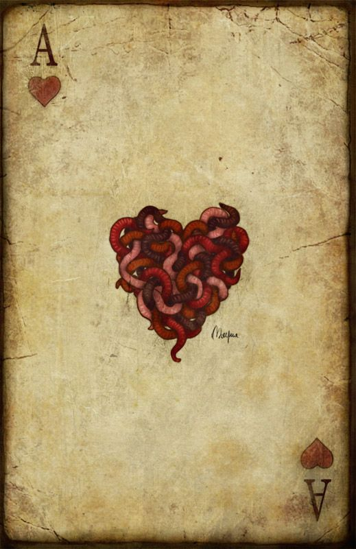 The Ace Of Hearts Corazones Corazones De Amor Y Corazon Fuerte