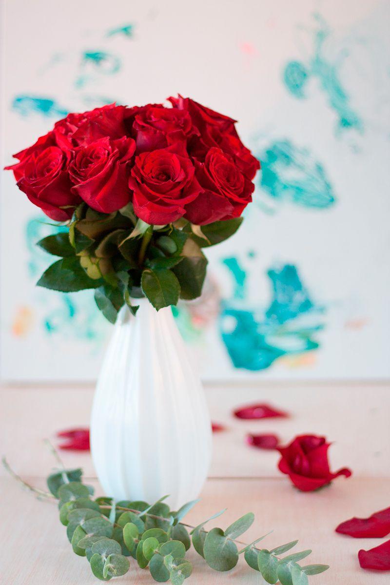 Flores en casa: Rosas rojas - Ebom