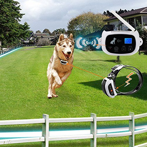 Mt Wl1 Wireless Dog Fence With Rechargeable And Waterproof Collar No Wires To Bury Invisible Containment Syst Dog Fence Dog Training Collar Wireless Dog Fence