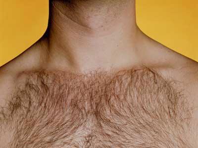 Why Do Humans Have Body Hair Body Hair Transplant Body Hair Male Pattern Hair Loss