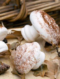 Meringue Mushrooms (20-30 mushrooms) 2 egg whites (at room temp) ½t lemon juice 100g caster sugar ½T cocoa powder piping bag