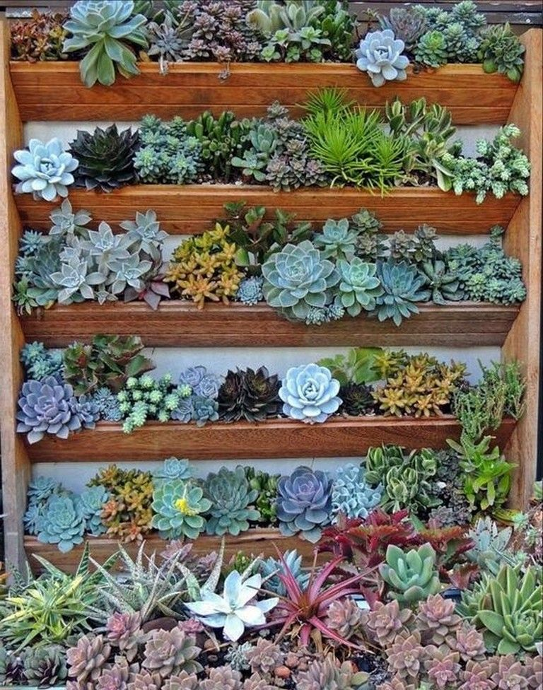 26 Awesome Ideas To Create Pallet Wall Garden Gardendesign Gardeningtips Backyardlandscaping Succulent Wall Garden Pallet Garden Walls Green Wall Garden