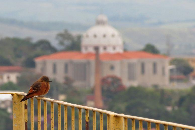 Basílica de São José. Barbacena, Minas Gerais