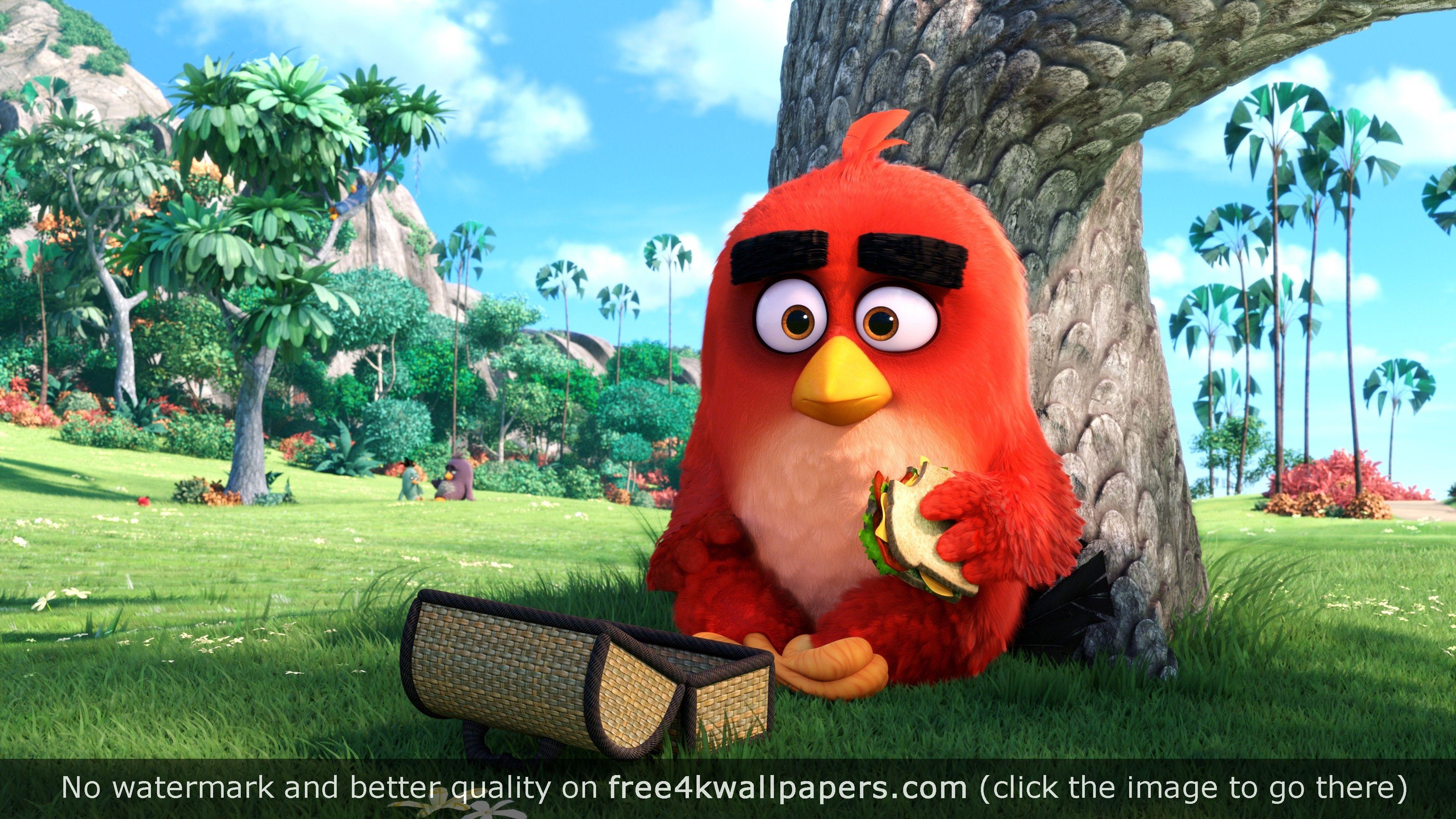 Red Angry Birds Movie 4k Wallpaper Angry Birds Movie Angry Birds Animated Movies