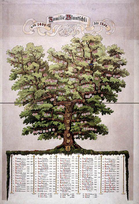 Stammbaum Bluntschli | Tree of Life | Pinterest | Genealogy, Family ...