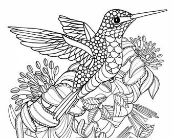 Printable Coloring Pages Of A Fancy Peacock Line By Tangledpeacock
