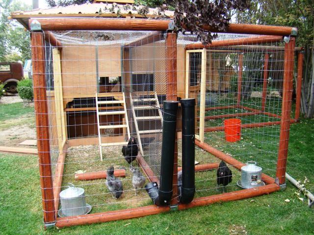Diy chicken feeder homemade chicken feeder pics wanted for Gazebo chicken coop