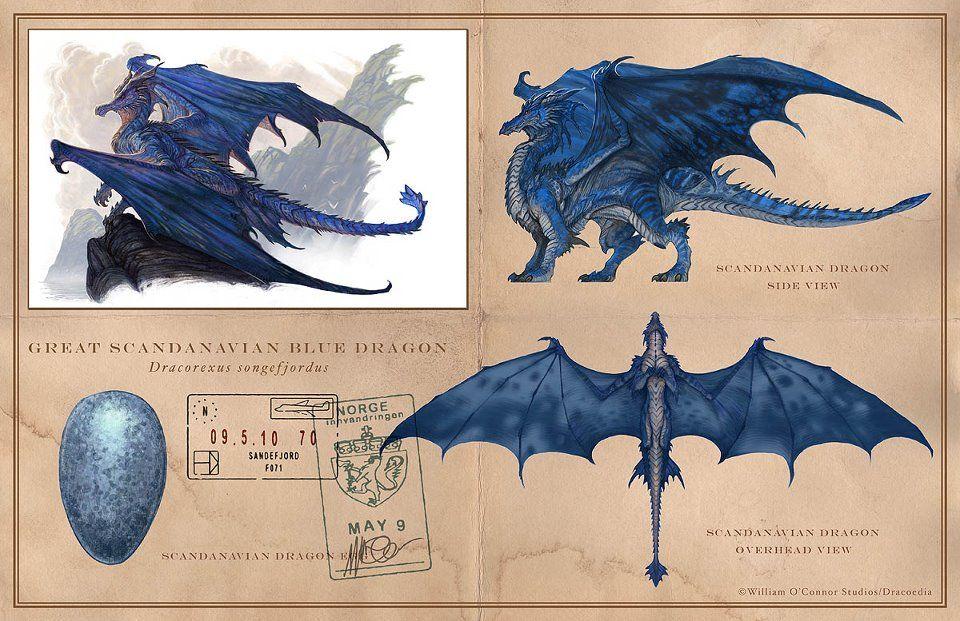 Book Dragon The Great Scandinavian Blue Dragon Dragon Pictures Dragon Artwork Dragon Sketch