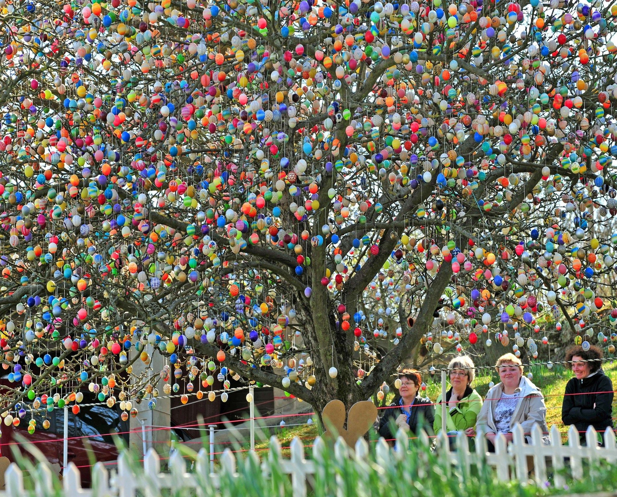 Easter egg tree with images easter egg tree easter