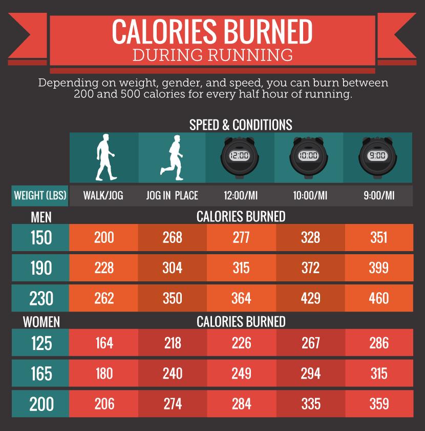 calories schedule - Parfu kaptanband co