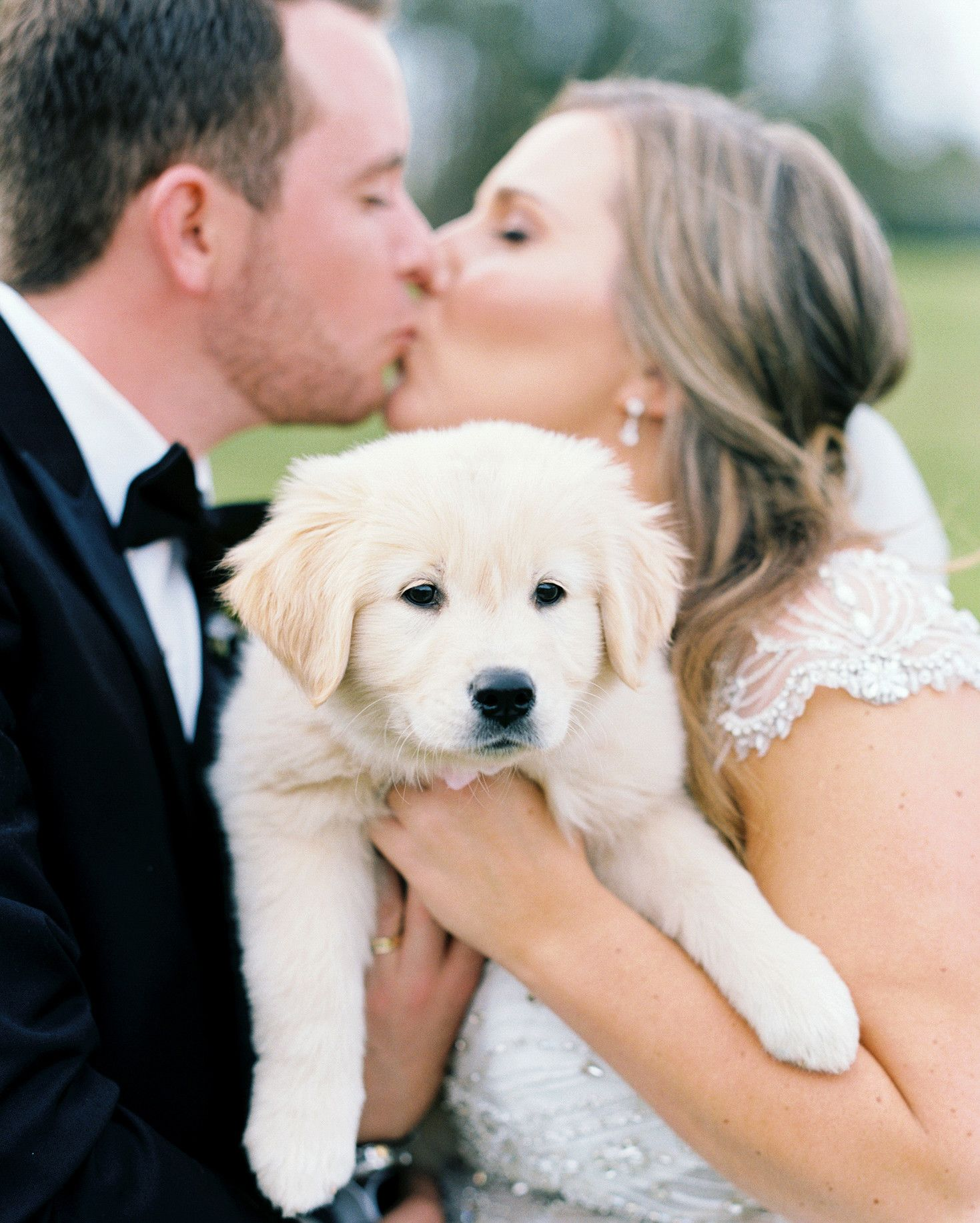 One Couple S Elegant Lakeside Wedding In South Carolina Golden Retriever Golden Retriever Puppy Puppy Wedding
