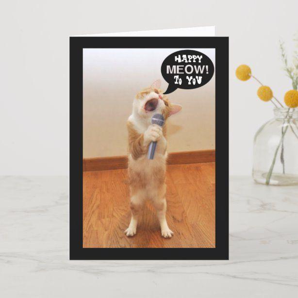 the singing cat birthday card  zazzle in 2020  cat