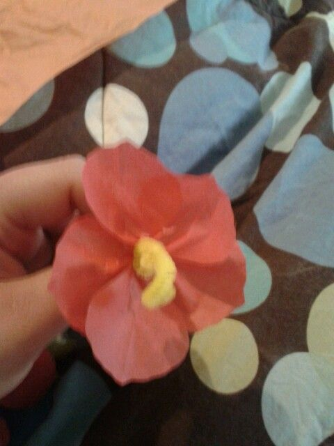 Hibiscus Flowers Made Out Of Pipe Cleaners And Tissue Paper Ideas