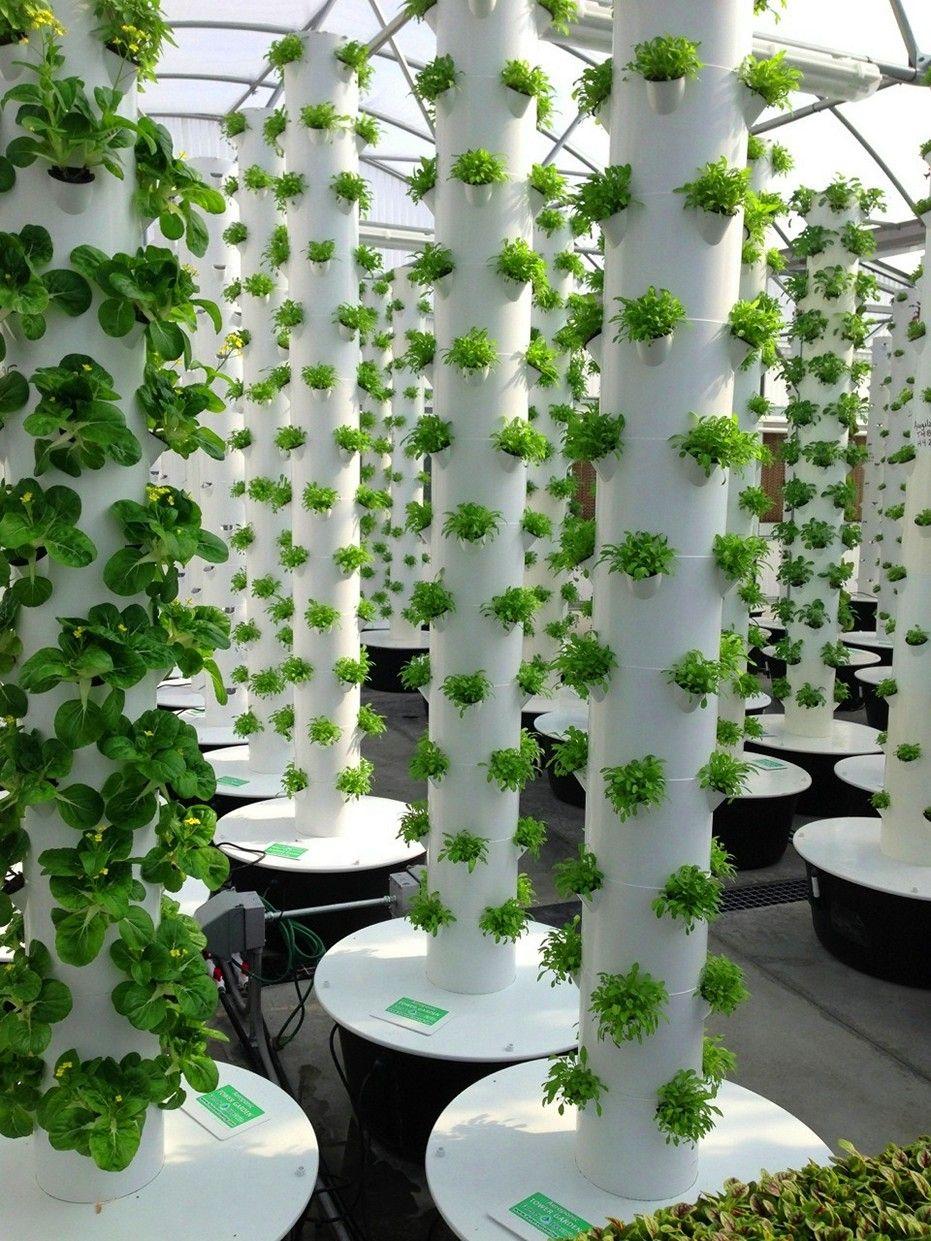 Diy vertical garden tower hydroponic farming greenhouse
