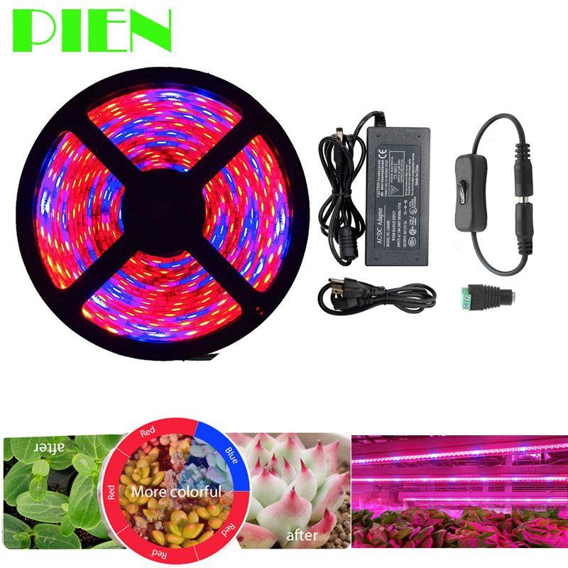 Plant Kweeklampen Volledige Spectrum Led Strip Bloem Phyto Lamp 5 M Waterdichte Rood Blauw 4 1 Voor Kas Hydrocultuur Power Adapter Grow Lights For Plants Grow Lights Led Grow Lights