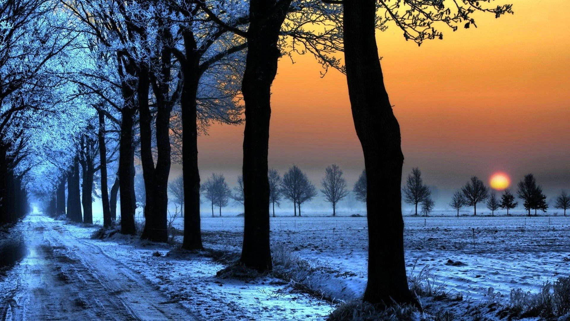 Winter Sunset Hd Wallpapers Sunset Photography Nature Sunset Wallpaper Sunset Nature