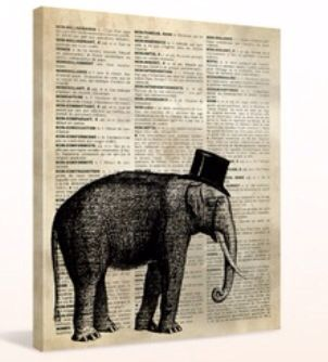 Elephant newspaper stretch