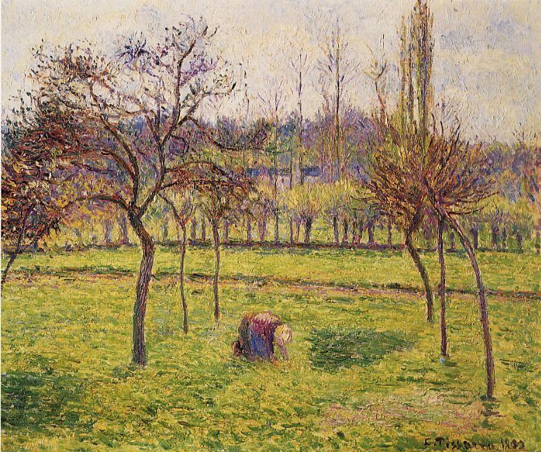Apple Trees in a Field - Camille Pissarro