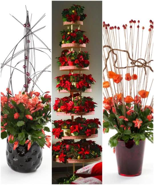 Doniczkowe Dekoracje 4 Plants