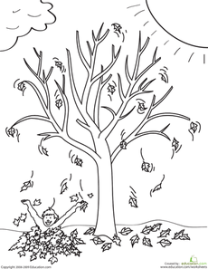 Fall Tree Worksheet Education Com Tree Coloring Page Autumn Trees Coloring Pages