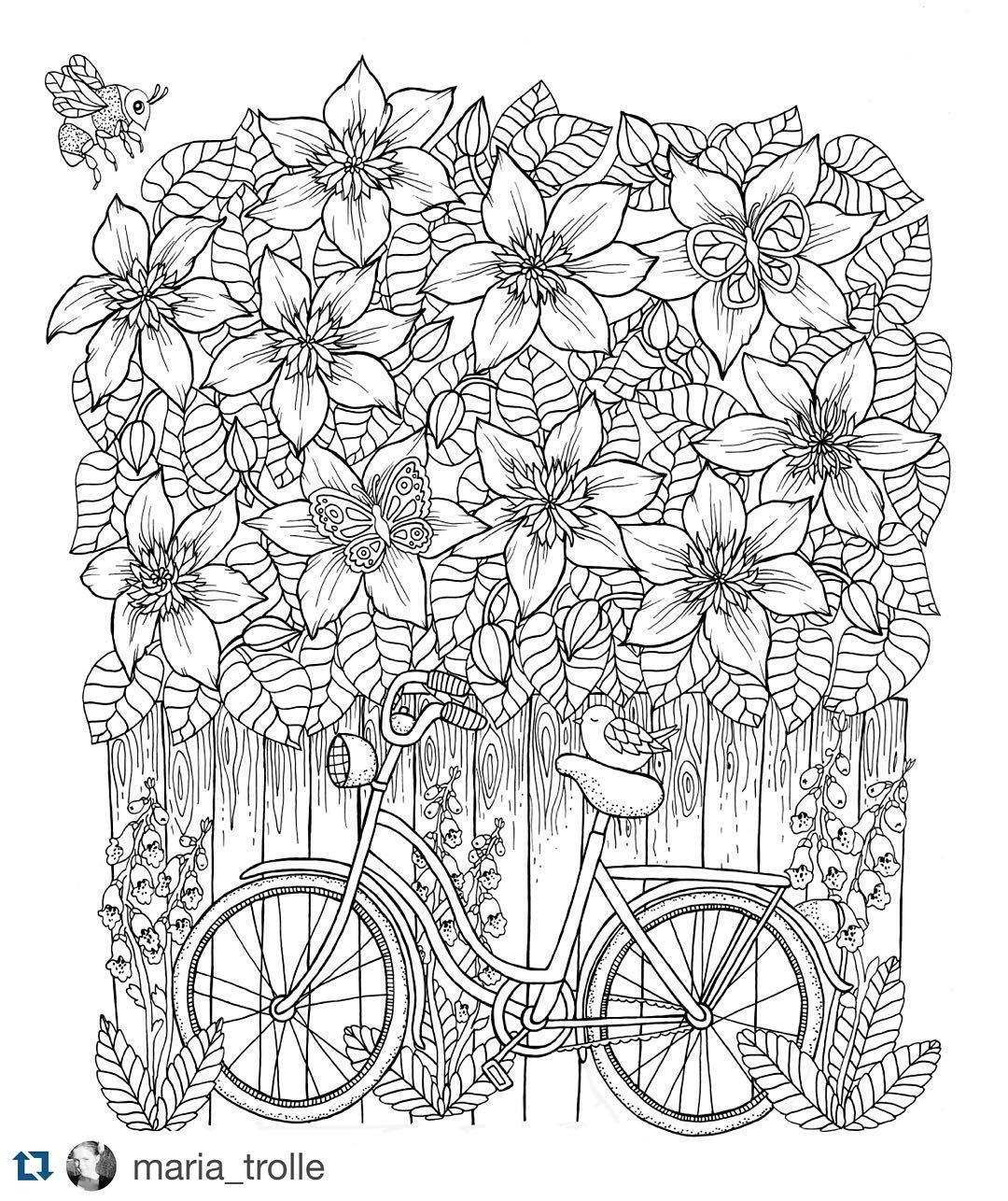 Flowers coloring book beautiful pictures from the garden of nature - Bike And Clematis From My Upcoming Coloring Book Mariatrolle