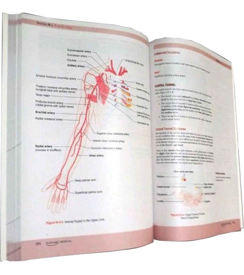 1. Behavioral Sciences 2. Anatomy 3. Physiology 4. Pathology 5 ...