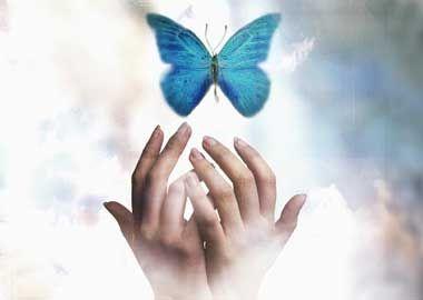 transeformation  reiki healing hands healing