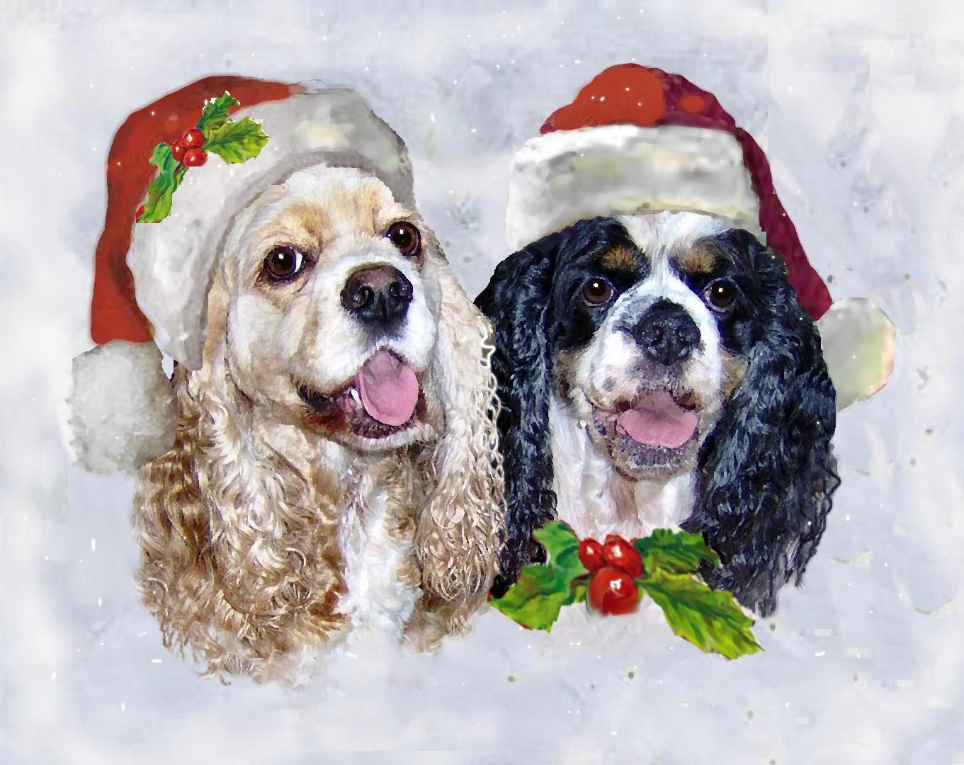 Pin By Ann Wynne On Cocker Spaniels And Springer Spaniels I Love Dogs Goldendoodle Puppy Puppies