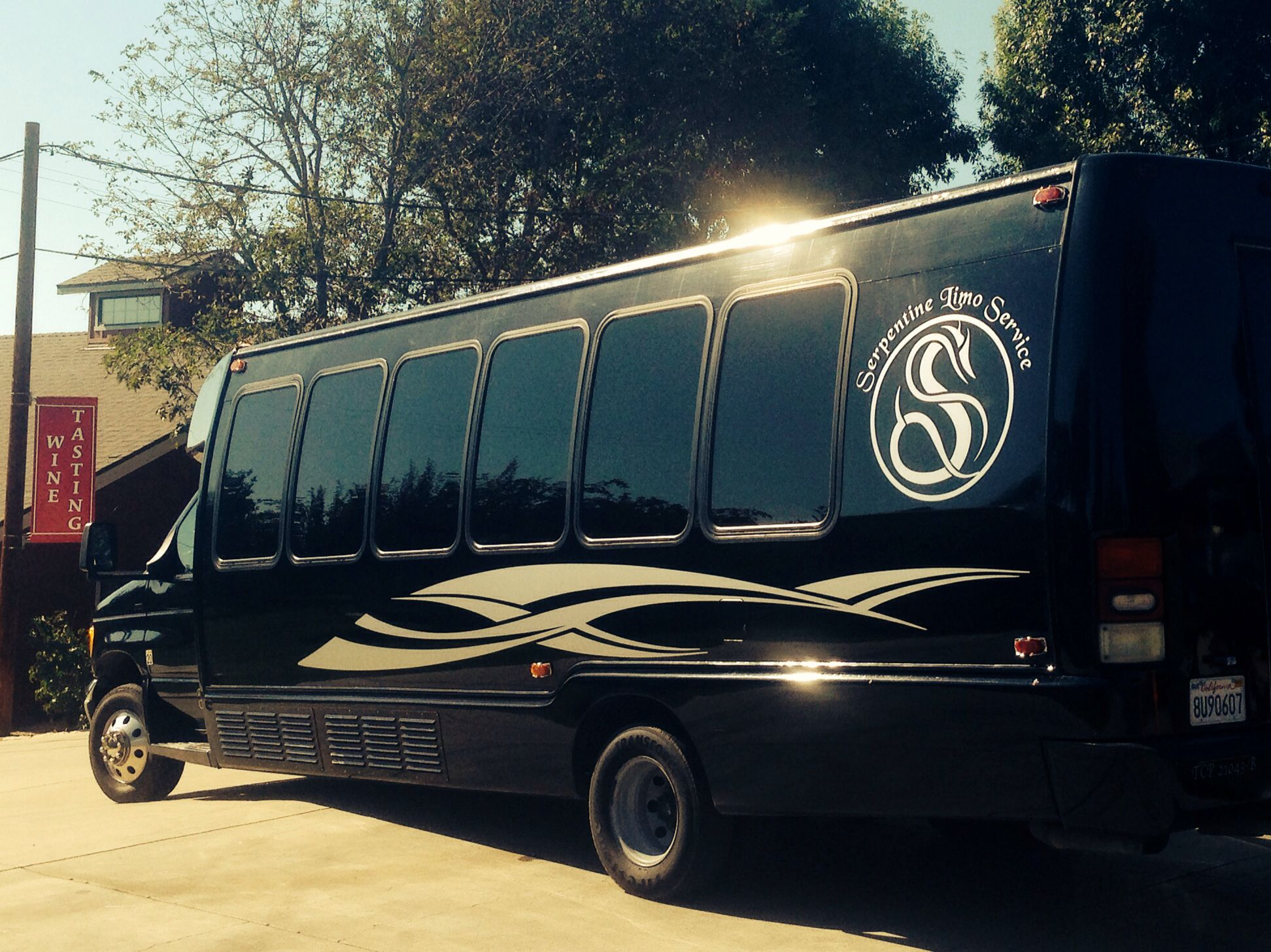 Cheap 20 passenger concert birthday bachelorette party bus