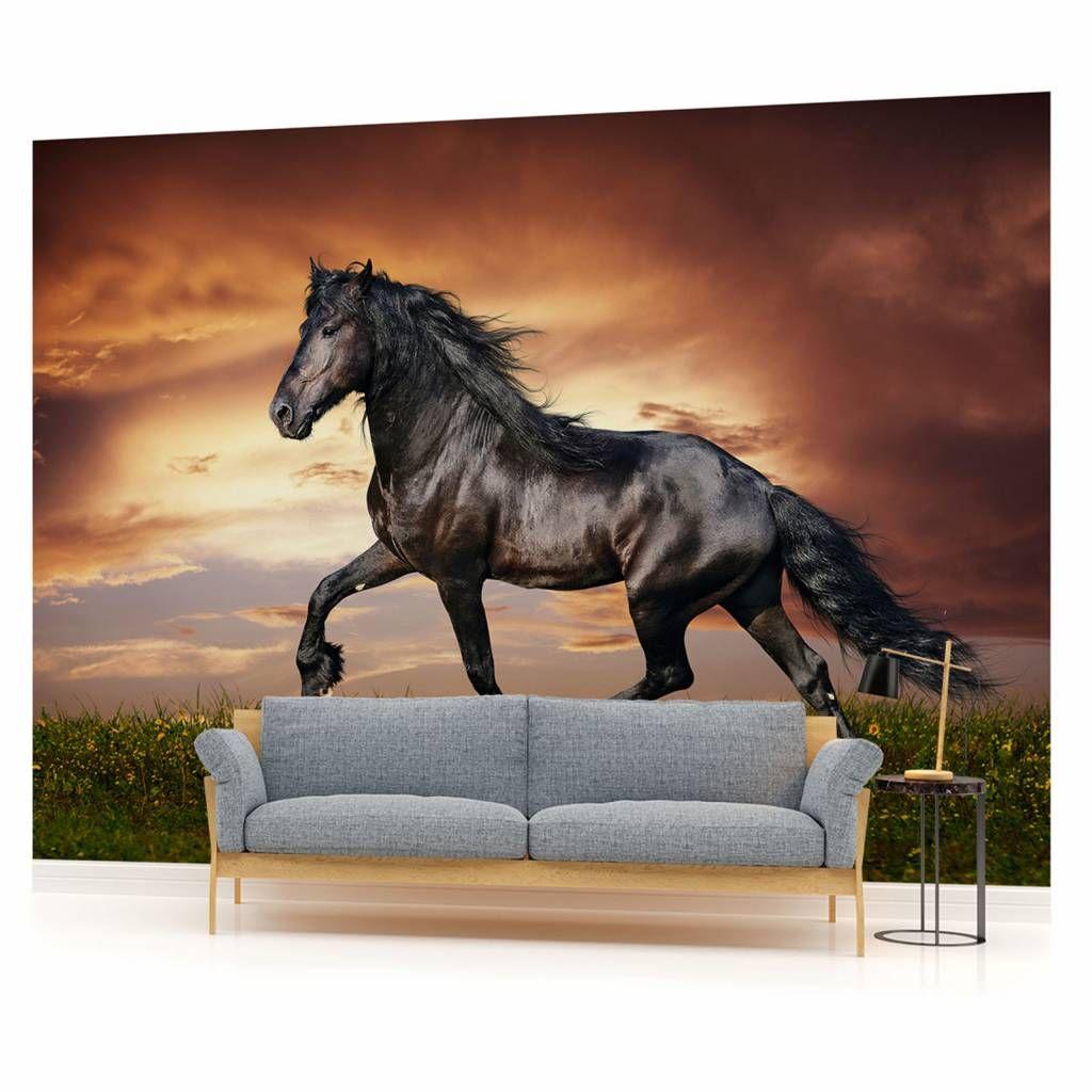 Fototapete wandbild fototapeten bild tapete schwarzes pferd m dchen 1088 dekorationshop - Pferde bordure kinderzimmer ...