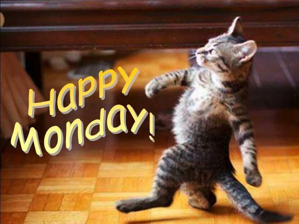 Mondays, Monday