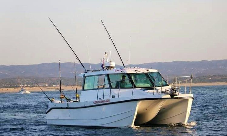 Edit power catamaran rental in cascais getmyboat plaja