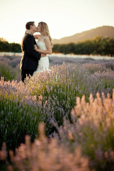 Väldigt vacker bild, ett bröllopspar i ett hav av lavendel. Vackert!