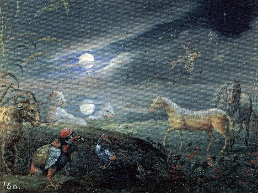 Lost Animals Van Kessel - Jan van Kessel the Elder - Wikipedia, the ...