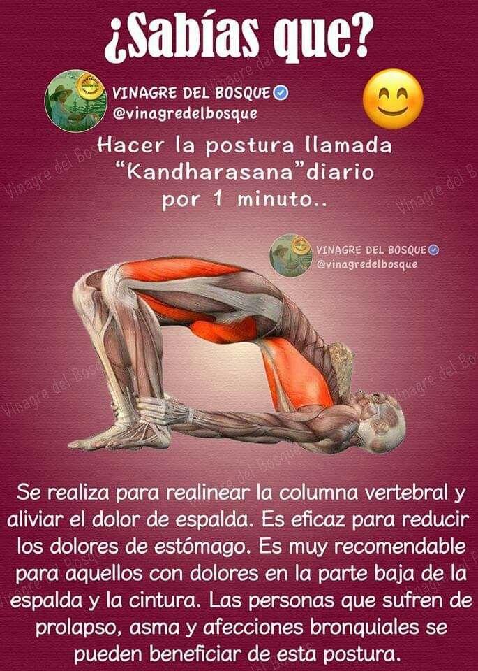 Ejercicios Ejercicios De Estiramiento Movimientos De Yoga