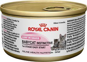 Royal Canin Babycat Instinctive Loaf In Sauce Canned Cat Food 3 Oz Case Of 24 With Images Kitten Food