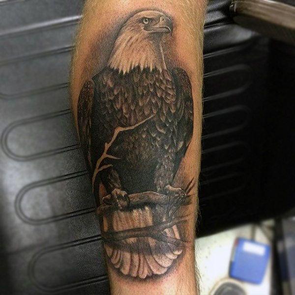 90 Bald Eagle Tattoo Designs For Men American Eagle Tattoos Bald Eagle Tattoos Eagle Tattoo Eagle Head Tattoo