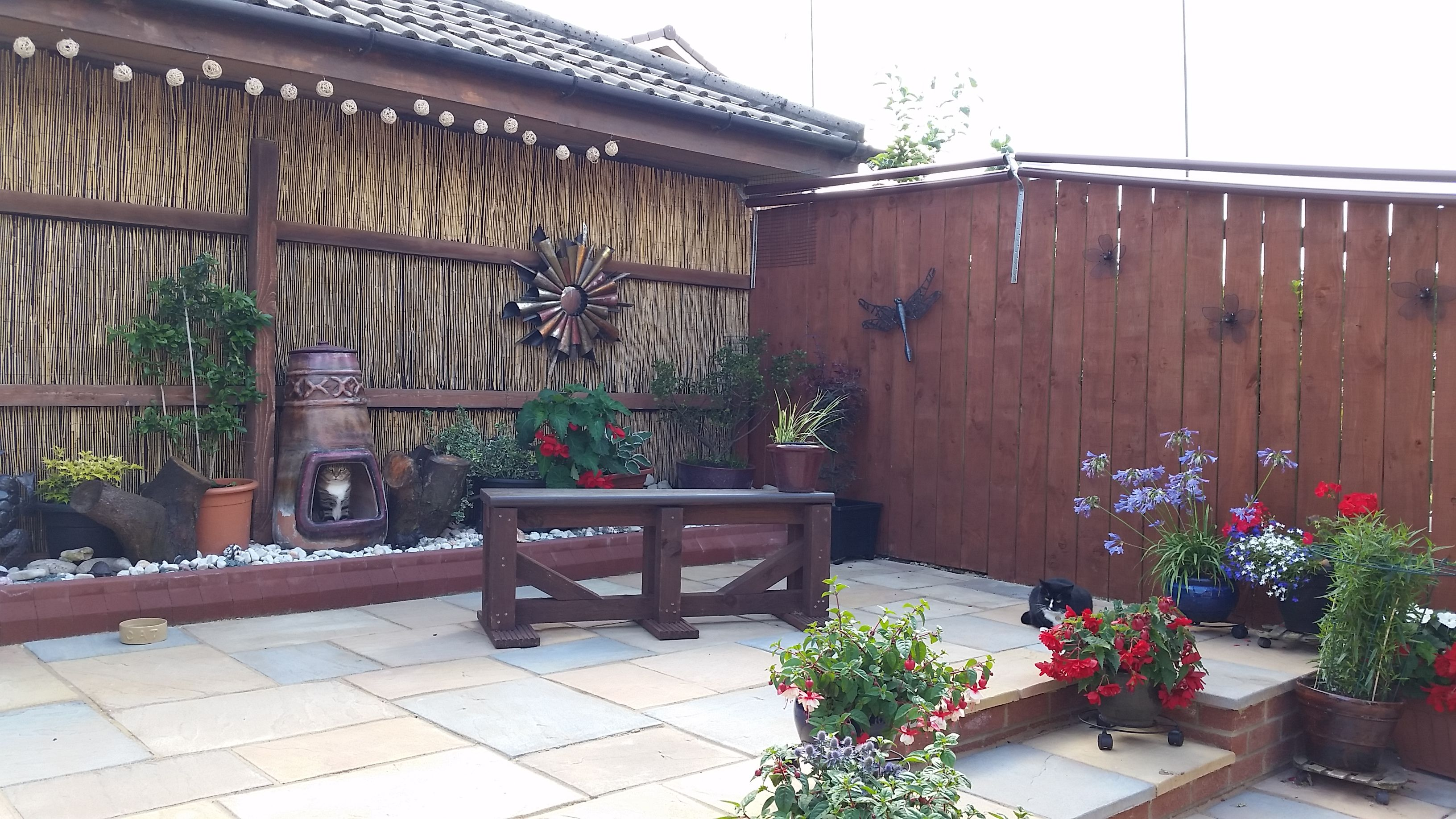 how to build a catio uk