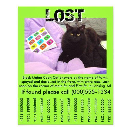 pet lost flyer template 4 5 x 5 6 flyer