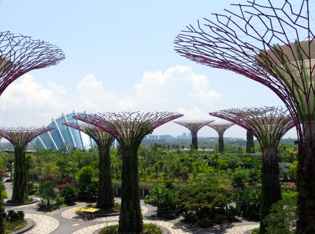 Singapore Gardens By The Bay Review Singapore Garden Gardens By The Bay Adventure Is Out There