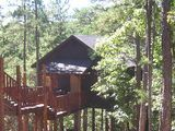 Oak Crest Cottages And Treehouses In Eureka Springs Ar I Can T Wait To Go Here For Our Anniversary Tree Houses For Rent Eureka Springs Tree House