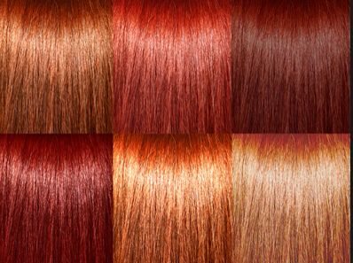 Red hair colors | Red heads | Pinterest | Red hair, Hair ...