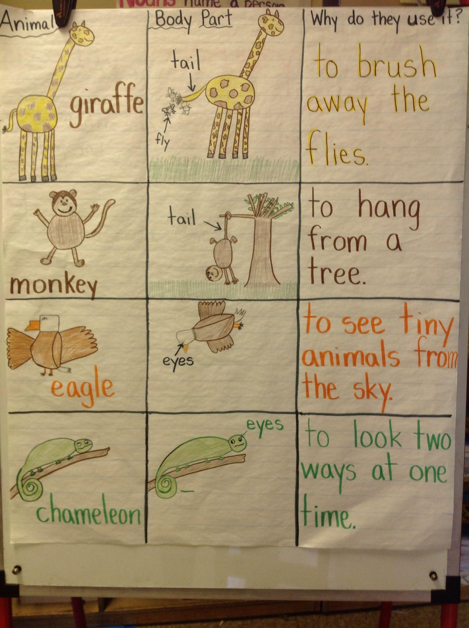 Pin On Kindergarten Journeys