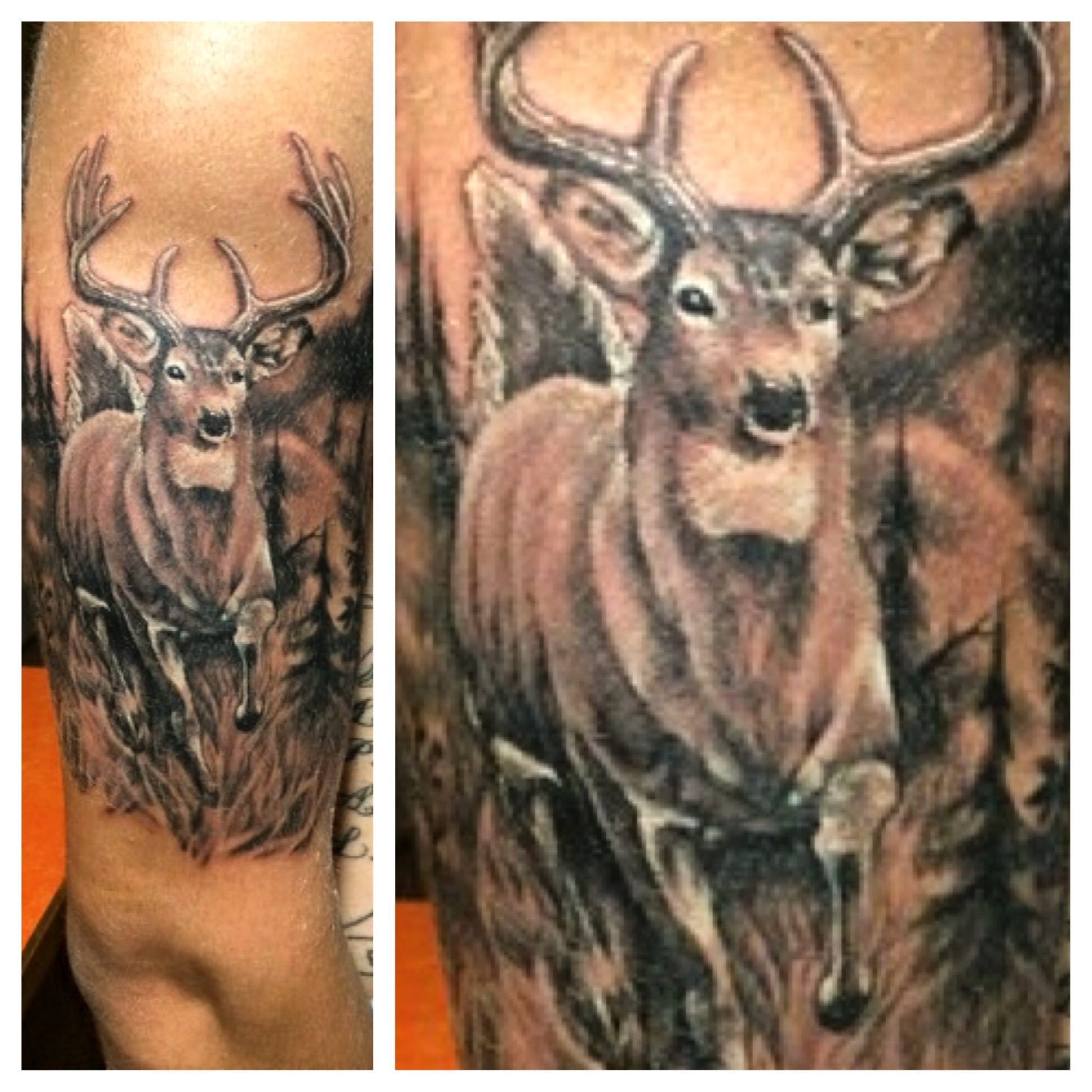 whitetail half sleeve black and gray tattoo wildlife buck hunting by mike clave of. Black Bedroom Furniture Sets. Home Design Ideas