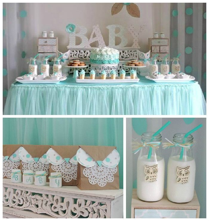 Turquoise owl welcome home baby party via kara 39 s party for Welcome home baby shower decorations