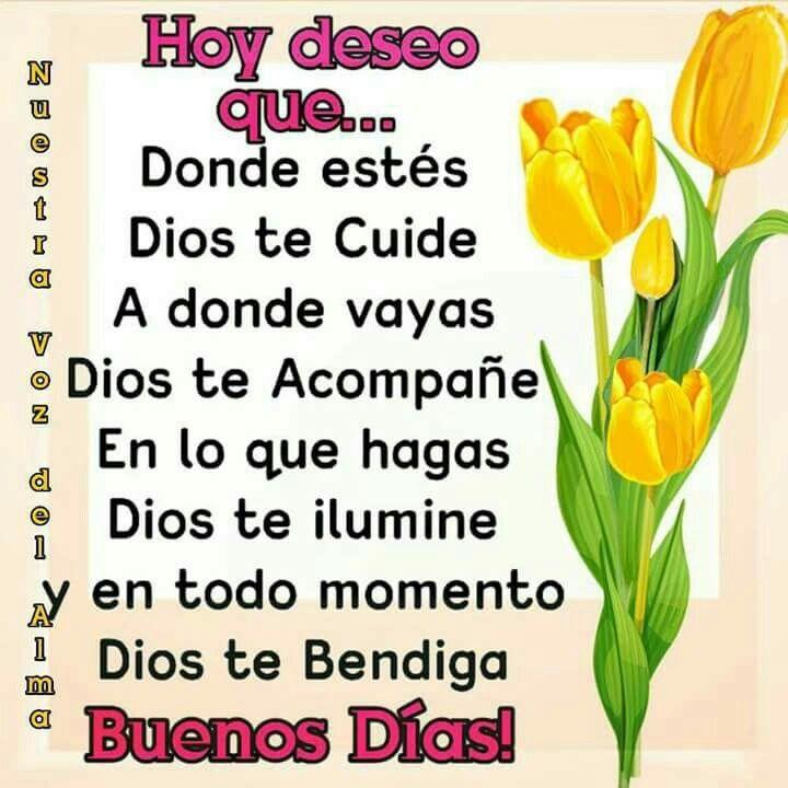 Pin De Willian Moreno En Joda Good Morning Quotes Y Good Night