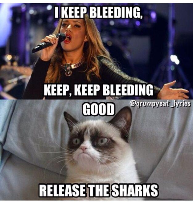 Grumpy Cat Sings Bleeding Love By Leona Lewis Grumpy Cat